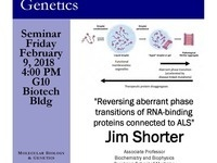 "MBG Friday Seminar with Jim Shorter ""Reversing aberrant phase transitions of RNA-binding proteins connected to ALS"""