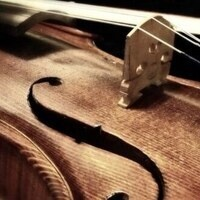 Vivo Chamber Players Concert and Reception