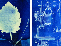 Cyanotype: A Bold Blue Art Form — A CAU summer program led by Jennifer Gioffre and David Todd