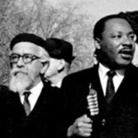 "Liberation - The Land: ""Reflections on Dr. King and the Exodus Story in a Time of Ecological Crisis"""