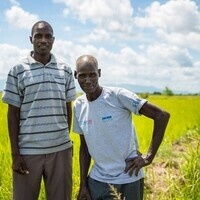 Catholic Relief Services in Malawi: Sustainable Development & Agriculture