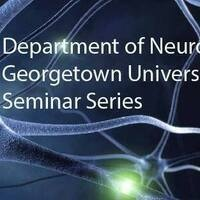 Neuroscience Seminar Series