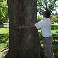 EcoReps Lunch & Learn: Urban Forestry