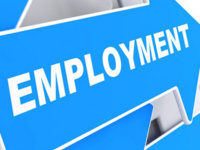 Employment & Social Security Number