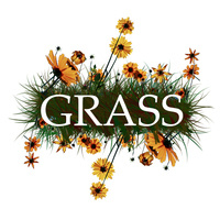 Reboot Meeting for Group Recycling And Sustainable Solutions (GRASS)