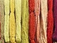 Using Plants for Natural Dyes