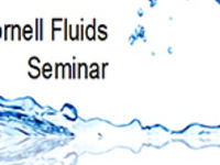 """CFSeminar: Arnaldo Rodriguez-Gonzalez (Cornell University), """"Manipulating Colloidal Particle Dynamics in Microfluidic Channels with Particle-Obstacle Interactions"""""""