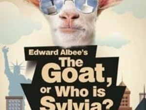 CVRep Presents Edward Albee's THE GOAT, OR WHO IS SYLVIA?