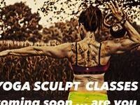 Yoga Sculpt @ In Sync Fitness & Yoga