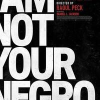 I Am Not Your Negro; Movies That Matter Screening Series