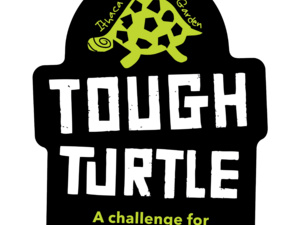 ICG's Tough Turtle