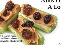 Study Break: Ants on a Log