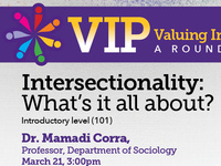Valuing Inclusion Program (VIP) - Intersectionality: What's It All About?