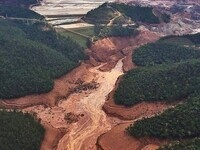 Protecting the Amazon Rainforest: The Samarco Accident and Beyond