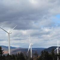 New England's wholesale electricity markets