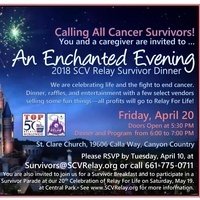 An Enchanted Evening by the American Cancer Society