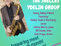 The Shelley Yoelin Group