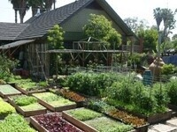 Public Workshop Series: Sustainable Gardening Practices @ Walla Walla Community College