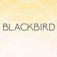 BLACKBIRD Curated by Alexis Dixon, Curatorial Practice '18