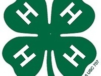 4-H Food, Fun & Fitness (Abbeville County)