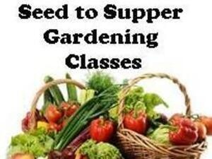 Seed to Supper - Free Gardening Classes