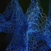'Neurons Like Ghosts' Gallery Exhibition