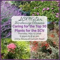 Gardening Class: Caring for the Top 30 Plants for the SCV