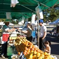25th Birthday Celebration for the Santa Clarita Farmers' Market (College of the Canyons)