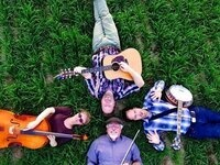 Summer Sounds on the Plaza: Rogue Lobster - live music @ Land Title Plaza