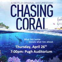 Chasing Coral Screening