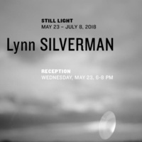 Lynn Silverman: Still Light