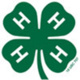 4-H Summer Fun For August
