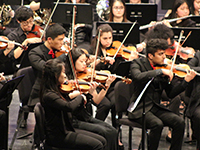 Symphony Orchestra and Chamber Orchestra: CU Music
