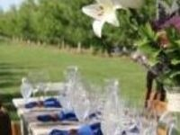 2018 Harvest Dinner in the Vineyard @ Watermill Winery