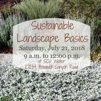 The Basics of a Sustainable Landscape