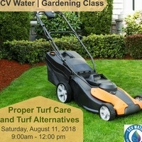 Proper Turf Care and Turf Substitutes