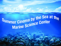 Summer Cinema by the Sea