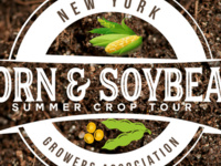 2018 Corn & Soybean Summer Crop Tour
