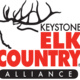 Film in the Forest: ELK