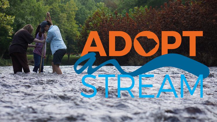 SC Adopt-a-Stream Macroinvertebrate training