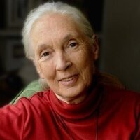 THCAS Voyages of Discovery Lecture Series - Premier Lecture: Dr. Jane Goodall