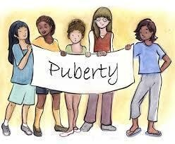 Puberty, Growth and Development Workshop- Cumberland County