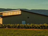 Fall Release @ Dusted Valley Winery