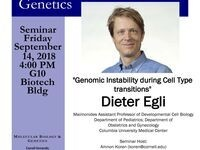 "MBG Friday Seminar with Dieter Egli ""Genomic Instability during Cell Type transitions"""