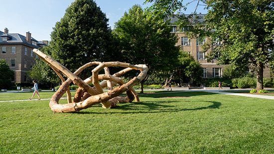 Sasa Zivkovic and Brian Havener: Log Knot: On Perpetual Wood Cycles and Forest Processes