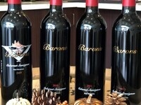 Red Mountain Cabernet Sauvignon Vertical Tasting @ Barons Winery