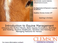 Introduction to Equine Management