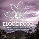 BLOODROOT: THE BALLAD OF CLINCH MOUNTAIN