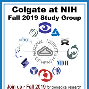 NIH Study Group Fall 2019 Info Session