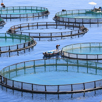 Toward sustainable seafood: The limits and possibilities of aquaculture certification